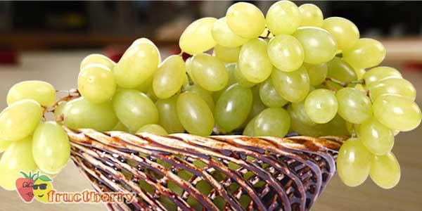 белый-виноград