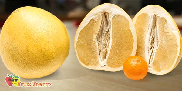 помело-и-мандарин