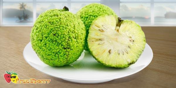 Адамово-яблоко1