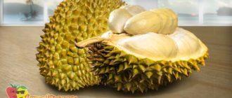 дуриан-фрукт