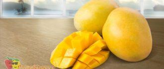 манго-на-столе