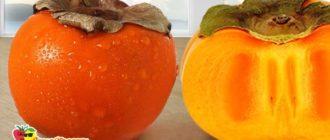 фрукт-оранжевый