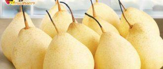 плоды-из-китая