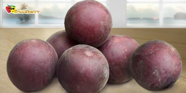 Чёрные-сорта-абрикоса