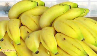 связка-фруктов