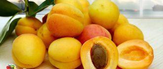 фрукты-абрикосы