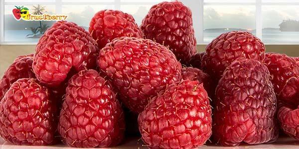 ягода-свойства