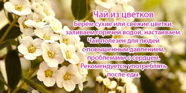 чай-с-цветами-боярки