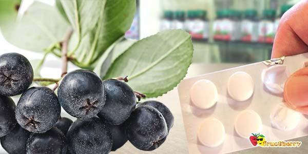 Какие свойства черноплодной рябины thumbnail