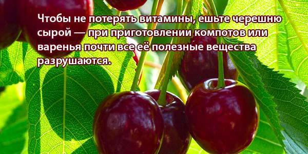 Польза-ягоды