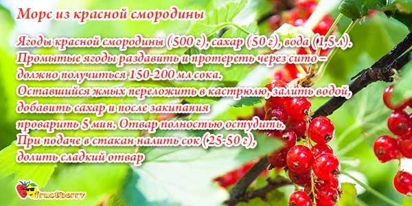 морс-из-красной-смородины