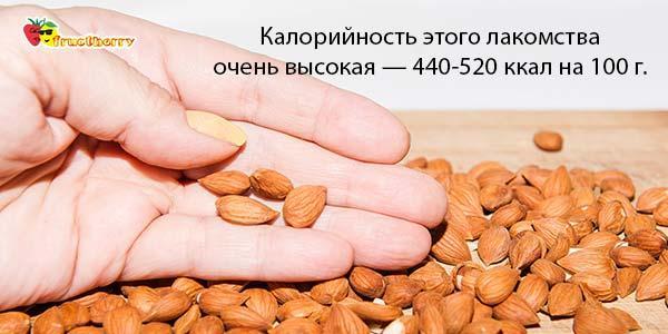 Калорийность-абрикосовых-семян