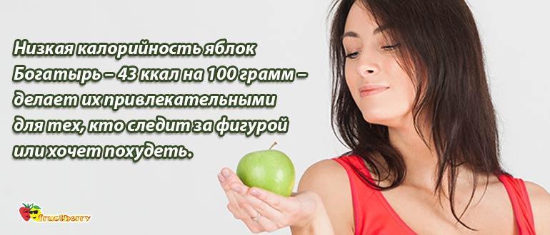 калорийность яблока богатырь