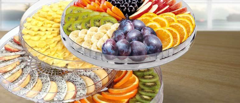 сушка плодов в сушилке