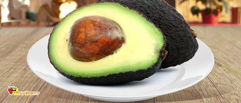 авокадо-хаас