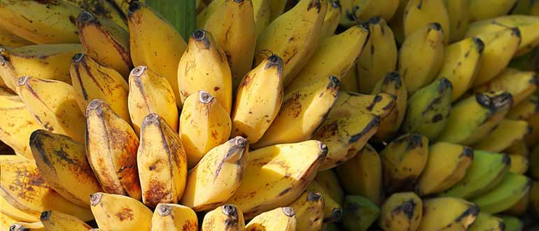 бананы Вьетнама