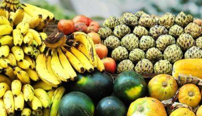 фрукты-индии