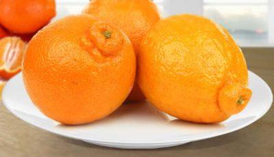минеола-фрукт