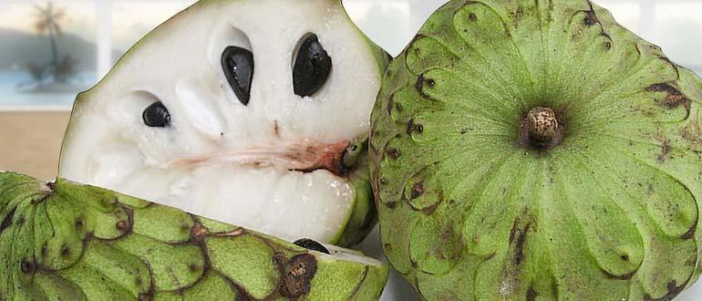 черимойя фрукт