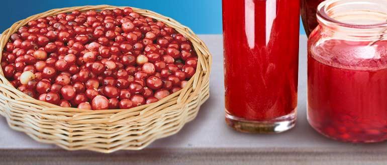 ягоды при ГВ