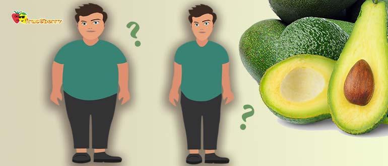 Авокадо диета