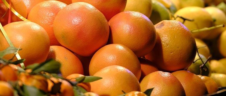 грейпфрут сколько можно