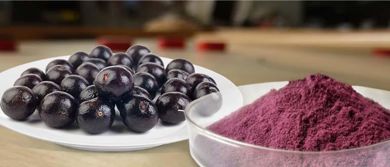 экстракт ягод асаи