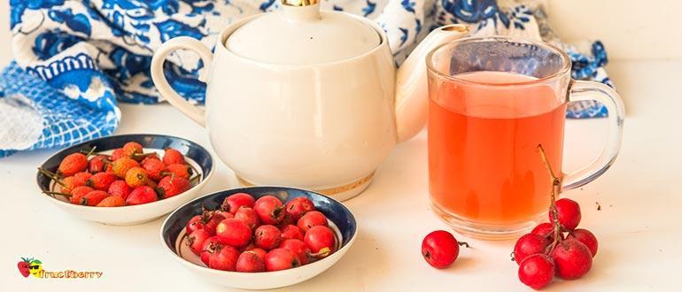 Боярышник и шиповник чай