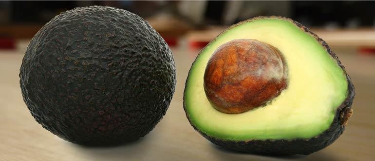 авокадо хаас сорт