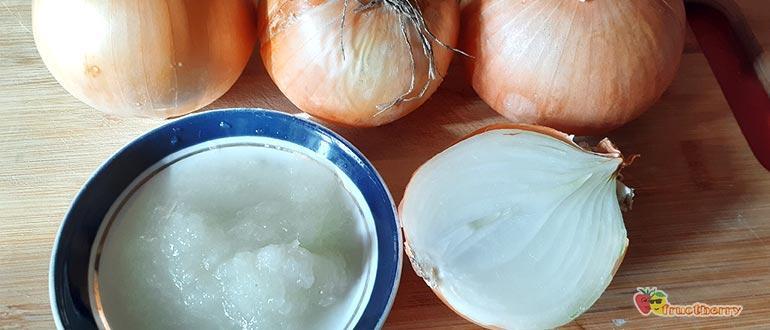 лечебные свойства репчатого лука