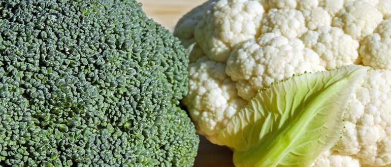 отличие брокколи от цветной капусты