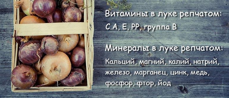 витамины в луке репчатом