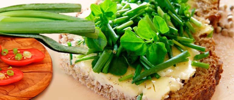 Лук зеленый в кулинарии