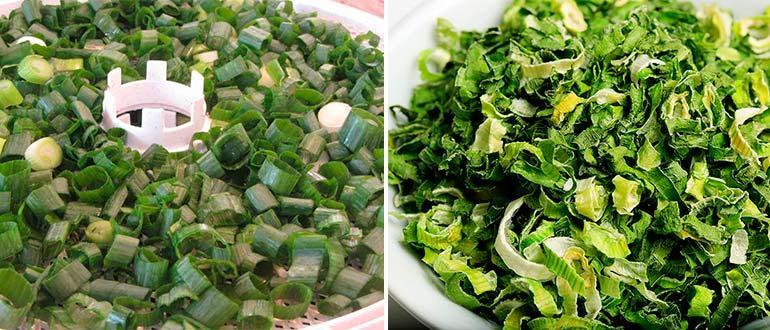 сушеный лук зеленый