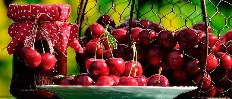 Применение вишни